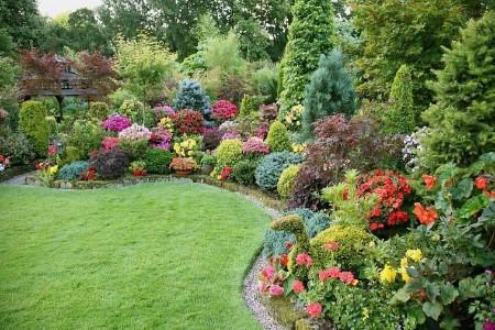 идеи для сада и огорода фото
